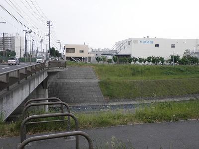 P6110049.jpg